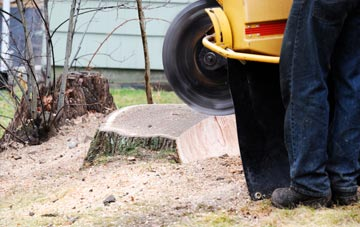 rated Oswestry tree stump removal companies