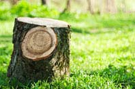 Oswestry tree stump removal services
